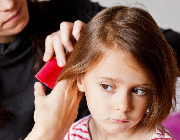 Anti-lice comb.